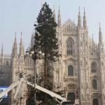 albero-natale-piazza-duomo-4