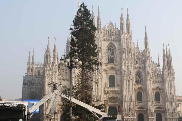 Magreglio – Vallassinesi salvano l'albero di piazza Duomo